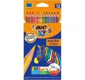 BIC Kids Evolution Stripes X12